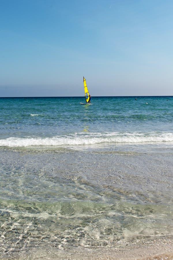 Download Windsurfer obraz stock. Obraz złożonej z wakacje, sardinia - 42525325