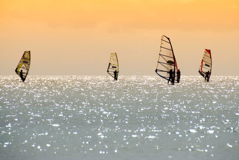 Download Windsurfer stock image. Image of motion, activities, speeding - 6674317