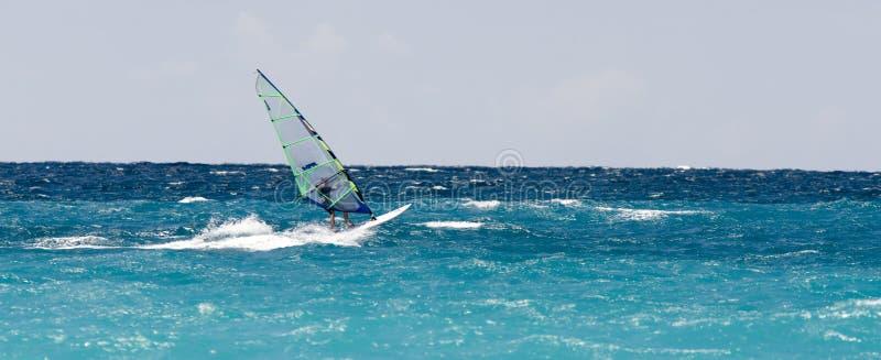 Windsurfer images libres de droits