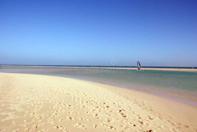 Windsurfer and amazing beach royalty free stock photo