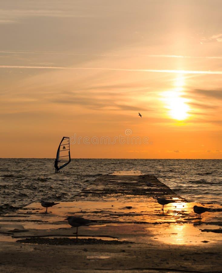 Windsurfer auf Sonnenaufgang stockfotos