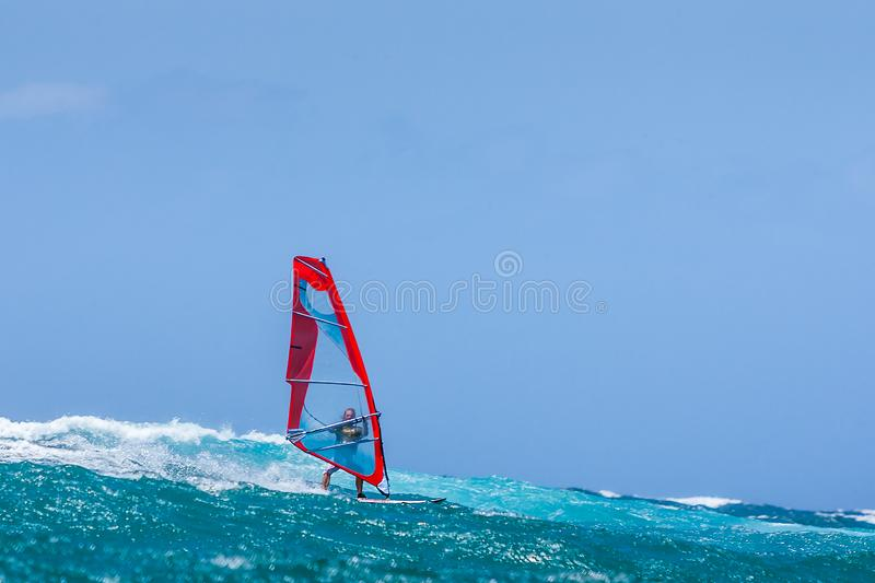 Windsurfer. Playing in the waves, acrobatic, action, active, adrenaline, adventure, aquatic, athletic, bay, board, danger, dynamic, extreme, float, foam, focus royalty free stock photos