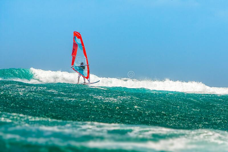 Windsurfer. Playing in the waves, acrobatic, action, active, adrenaline, adventure, aquatic, athletic, bay, board, danger, dynamic, extreme, float, foam, focus stock photo