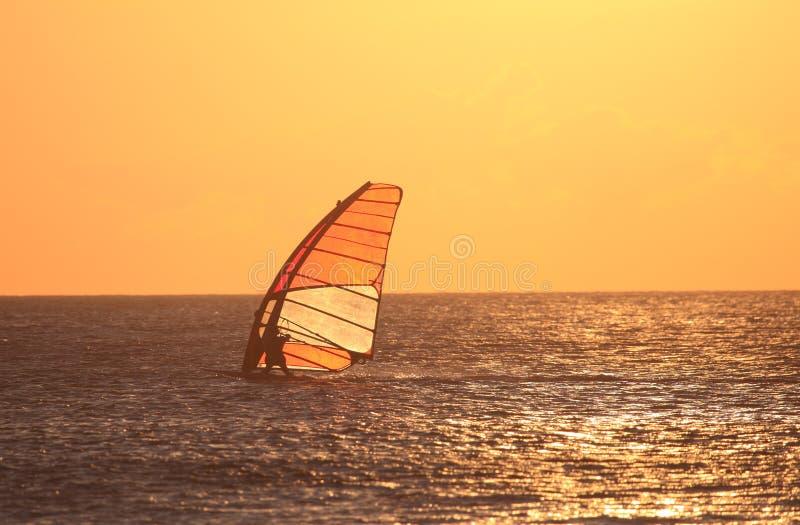 Windsurfer retroiluminado no por do sol fotografia de stock