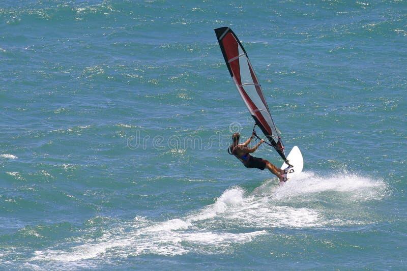 windsurfer sailing Гавайских островов windsurfing стоковые фотографии rf