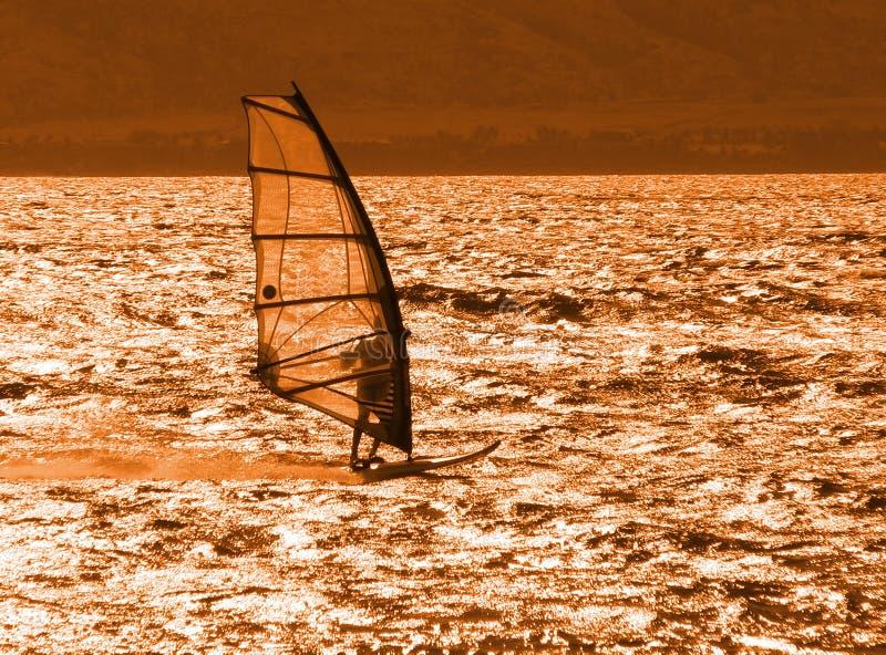 Download Windsurfer at Sunset stock photo. Image of windsurfing - 158450