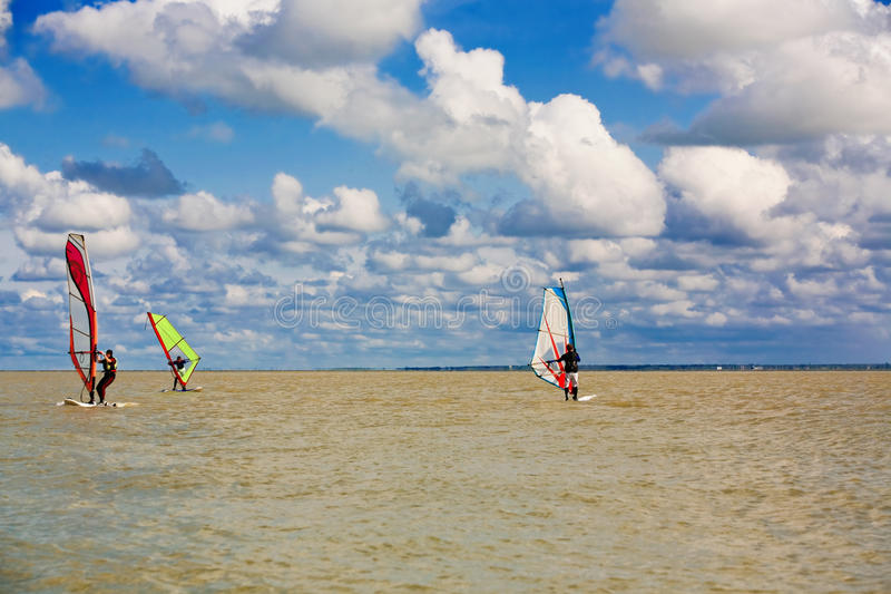 windsurfers photos libres de droits