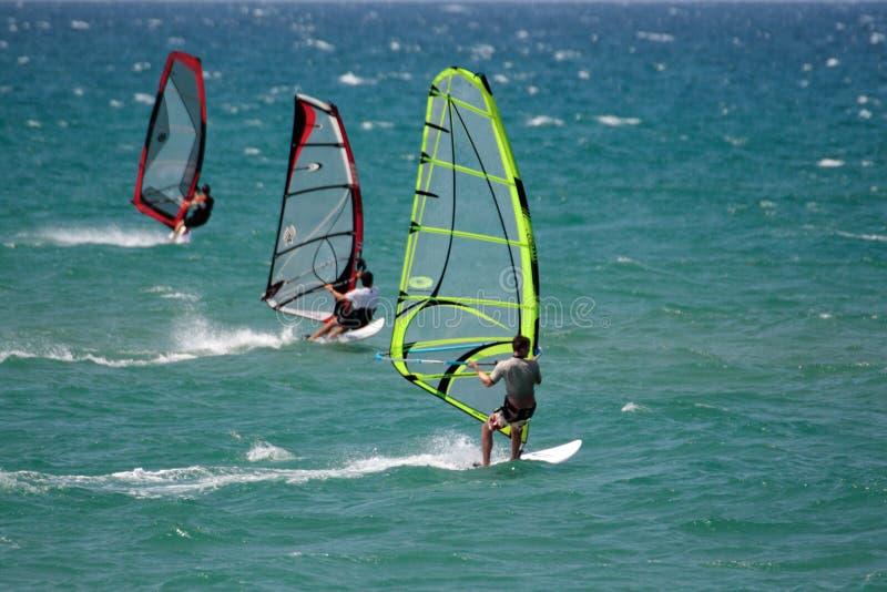 Windsurfers in Konkurrenz lizenzfreies stockbild