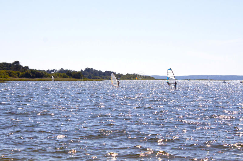 Windsurfers in the middle of a lake. In a sunny day royalty free stock photos
