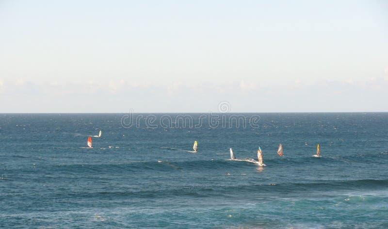 Windsurfers in the ocean. Maui, Hawaii royalty free stock photography