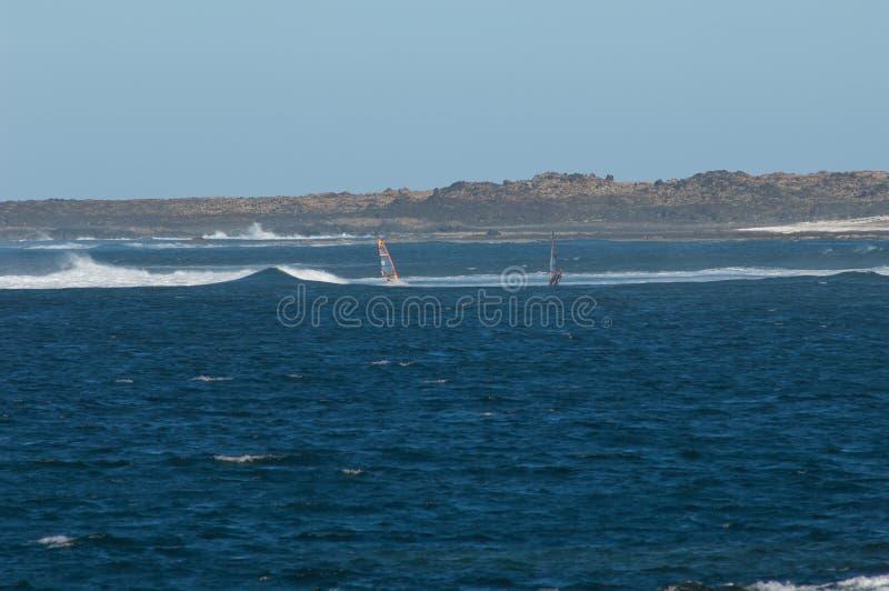 Windsurfers que navegam na ilha de Fuerteventura foto de stock
