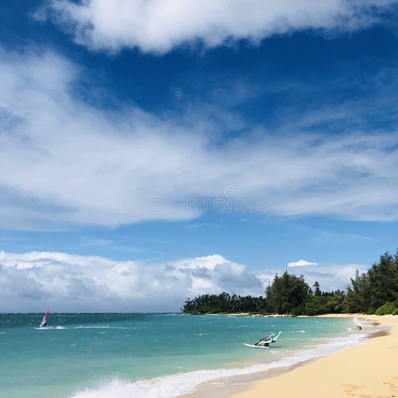 Windsurfers at Kahana in Maui. Windsurfers at the sea at Kahana in Maui, Hawaii stock photo