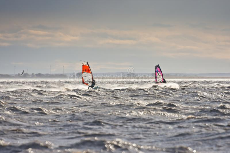 Windsurfers in a storm. BURGENLAND, AUSTRIA - OCTOBER 29, 2017: Windsurfers match each other on the Neusiedlersee Lake Neusiedl, struggling with strong wind royalty free stock images