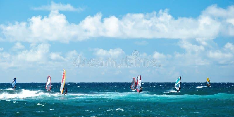Windsurfers in windy weather on Maui Island panorama. View of the windsurfers in windy weather on Maui Island panorama royalty free stock photography