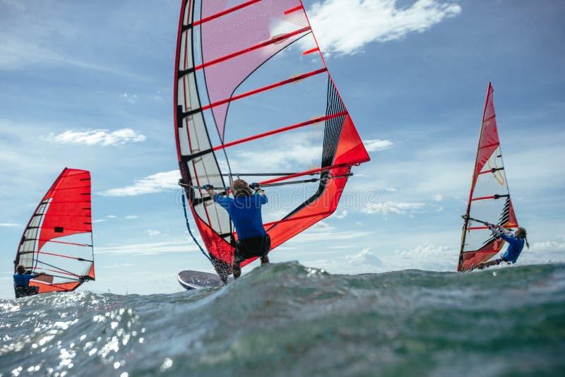 windsurfing fotos de stock royalty free