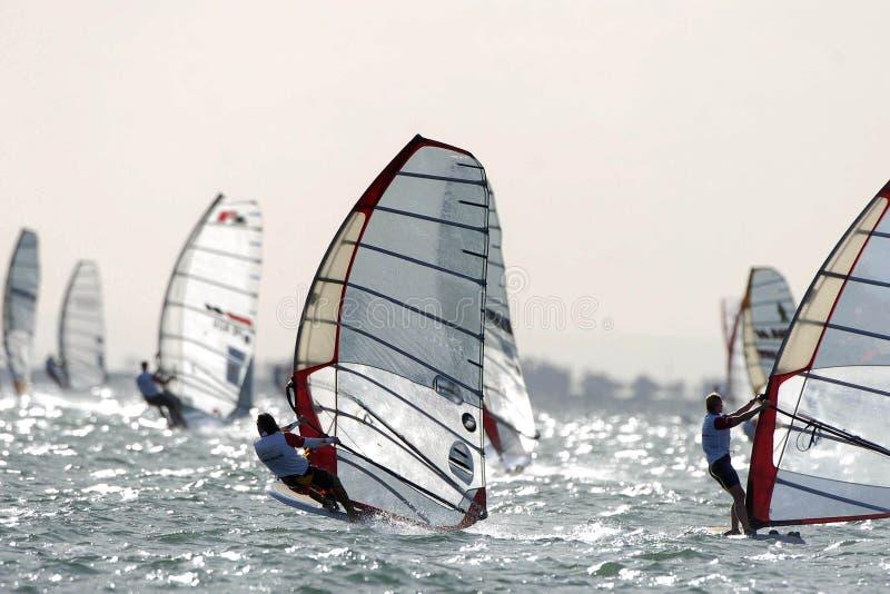 windsurfing zdjęcie stock