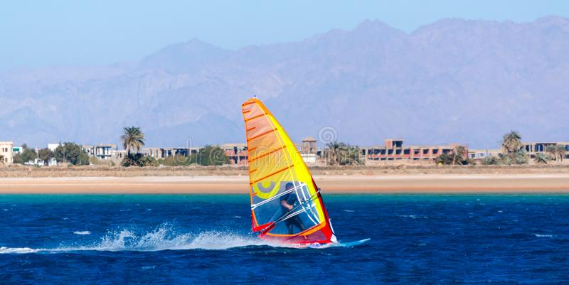 Windsurfing in the blue water on the background of the beach with palm trees and mountains in Egypt Dahab South Sinai royalty free stock photography