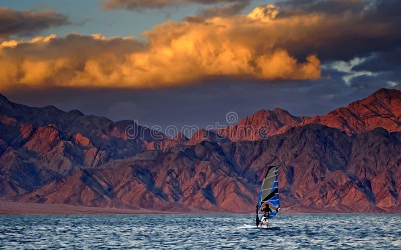 Windsurfing en Mer Rouge images stock