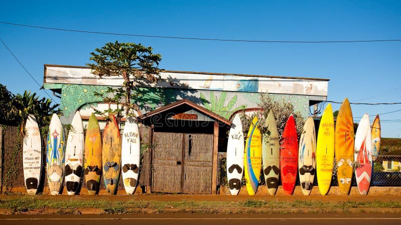 Windsurfing island of Maui. royalty free stock photography