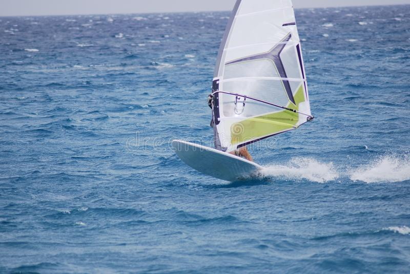 Download Windsurfing  on the move stock photo. Image of wind, fast - 22729244