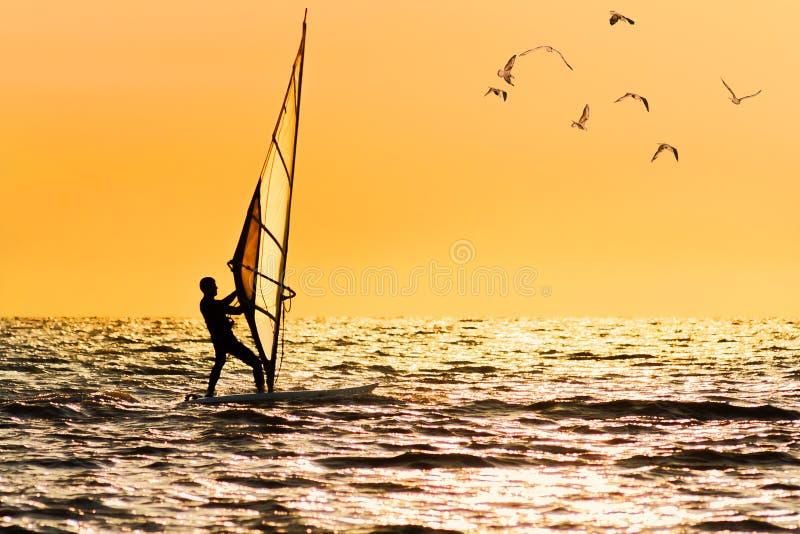 Windsurfing na pomarańczowym zmierzchu ` s tle obraz royalty free