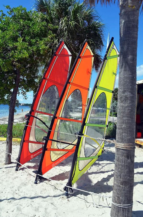 Colorful Windsurfing Sails royalty free stock photo