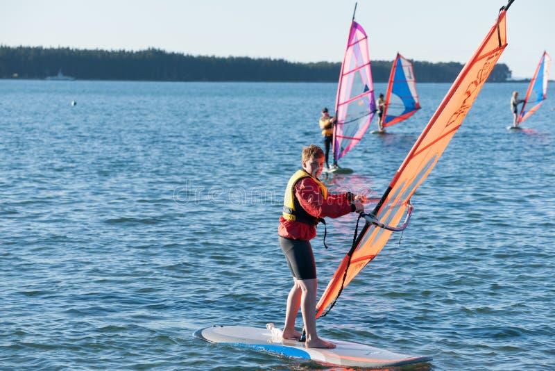 Windsurfing sur le port de Tauranga. image libre de droits