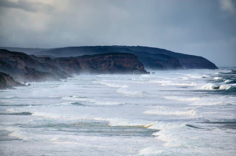 Windswept grov kustlinje med avbrottsvågor och vitt vatten royaltyfri foto