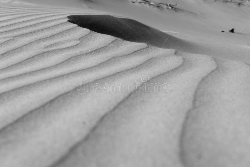 Windswept zandpatronen Negentig Mijlstrand, Northland NZ royalty-vrije stock foto's