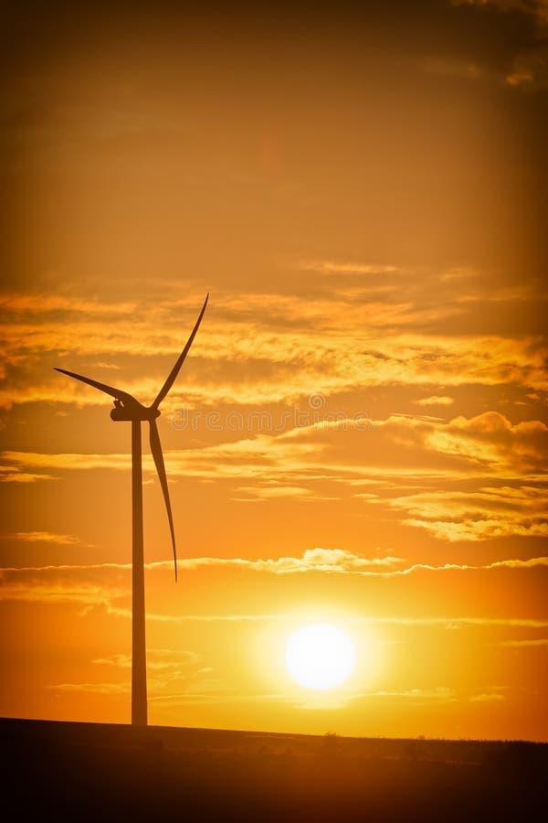 Windturbin royaltyfria foton