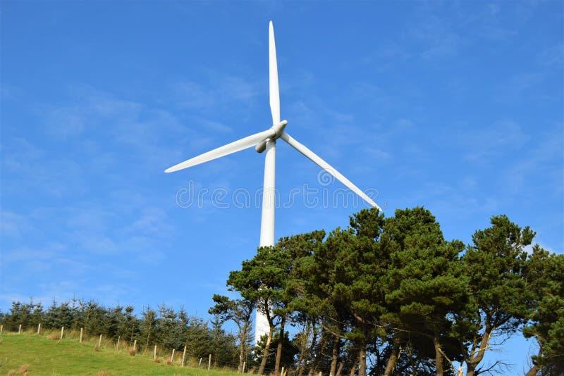 Windturbine die volkomen met aard wordt geïntegreerd royalty-vrije stock fotografie
