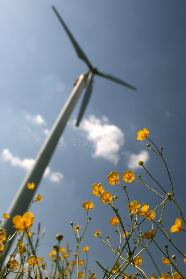 Windturbine in gebiedsbloemen stock afbeelding