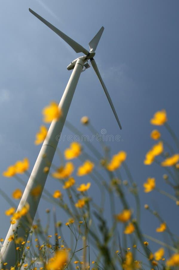 Windturbine in gebiedsbloemen royalty-vrije stock afbeeldingen