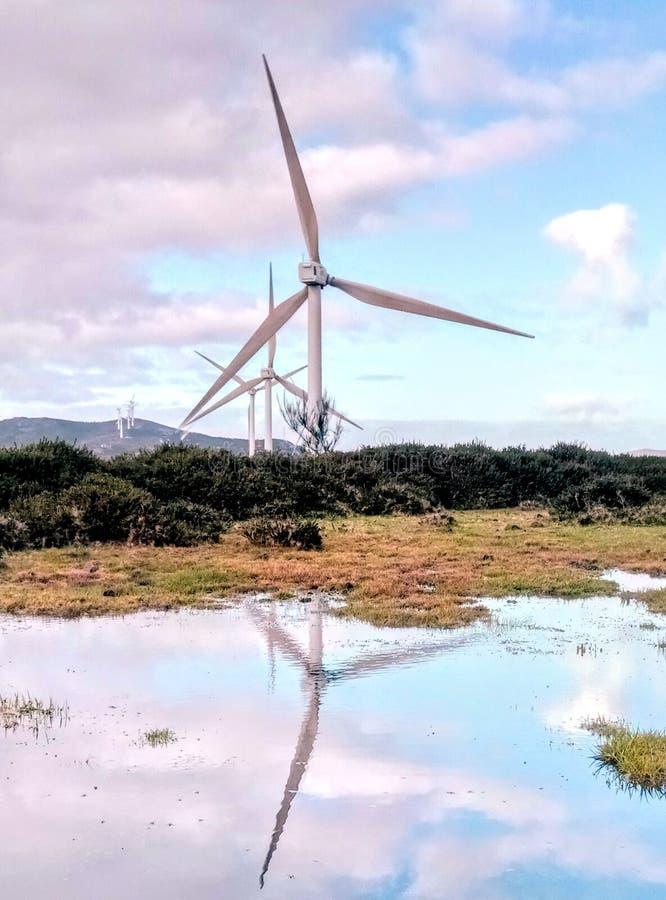 Windturbine reflekterar arkivfoton