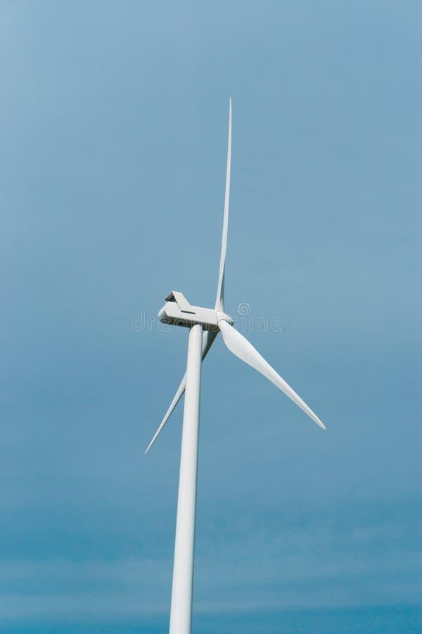 Windturbine van Nicaragua stock afbeeldingen