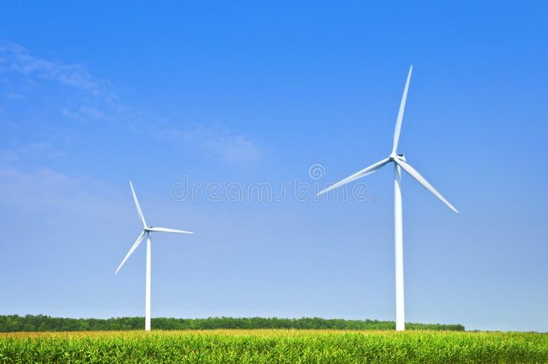 Windturbinen auf dem Gebiet stockbilder