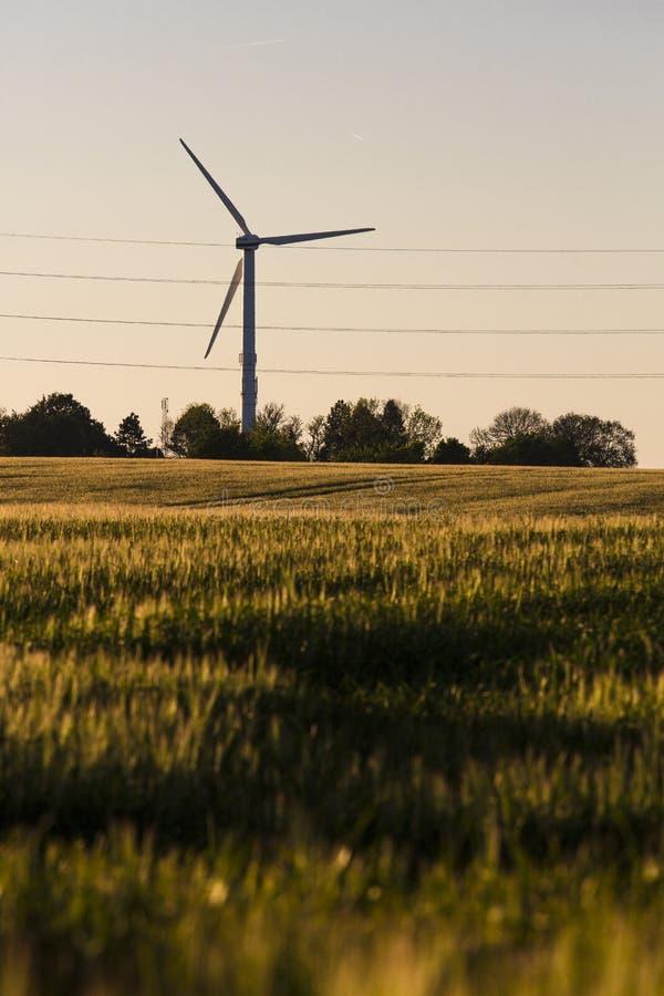 Windturbinen auf dem grünen Gebiet stockbilder