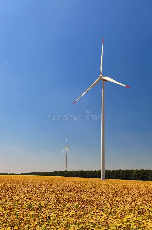 Windturbinen auf dem Sonnenblumegebiet lizenzfreie stockfotografie