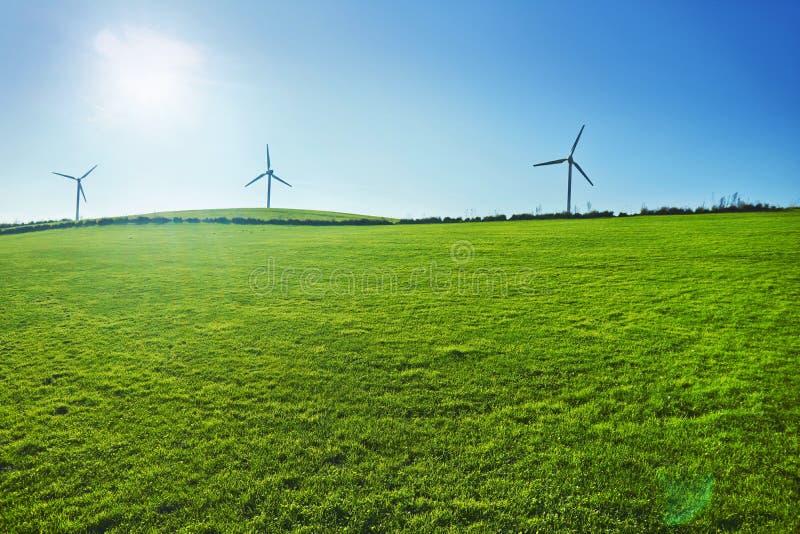 Windturbinen auf einem grünen Feld Grüne Energie lizenzfreie stockfotografie
