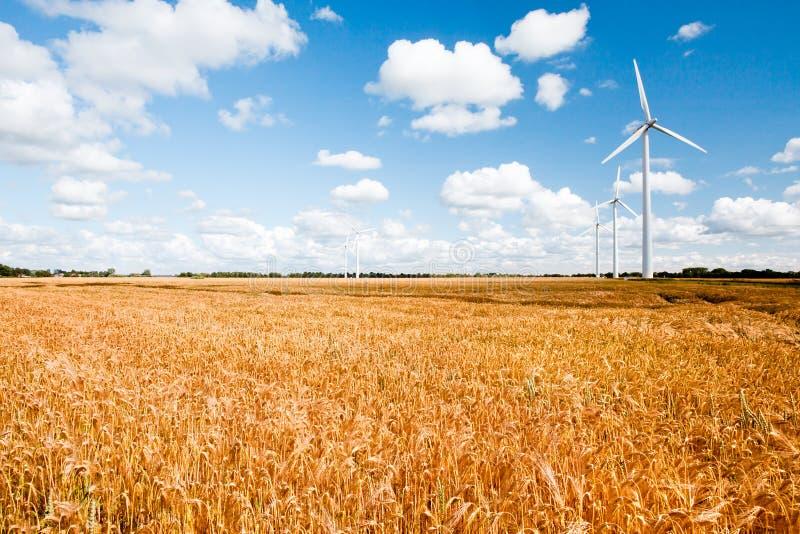 Windturbinen in der Landschaft stockfotografie
