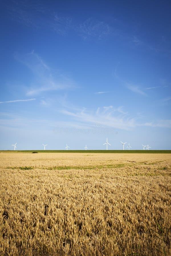 Windturbiner på diket för norrhav royaltyfri fotografi