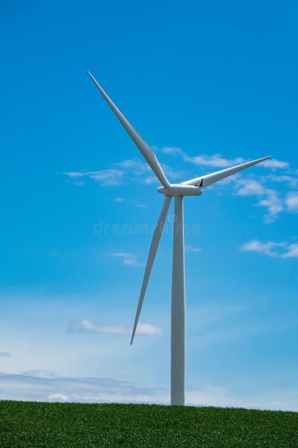 Windturbines en tarwegebieden in Oostelijk Oregon stock afbeelding