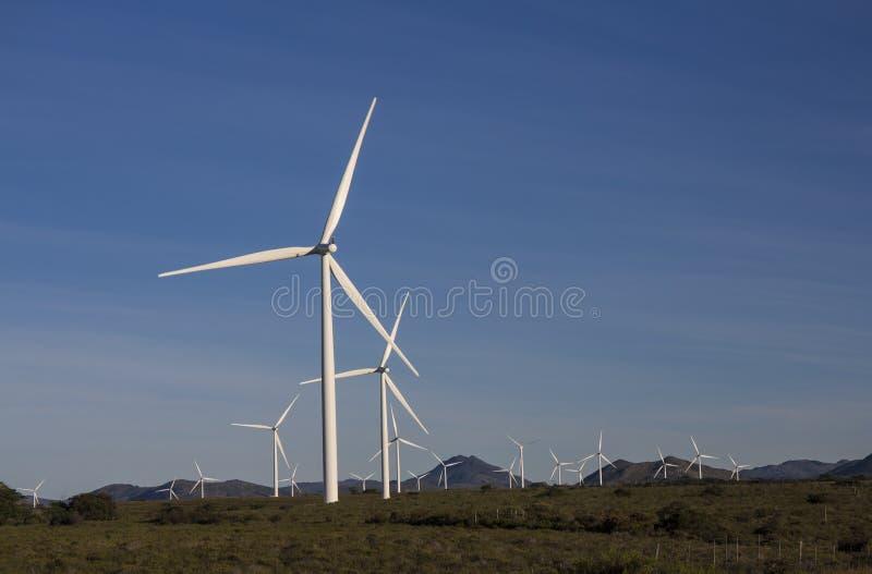 Windturbines om macht voor Zuid-Afrika te produceren royalty-vrije stock afbeelding