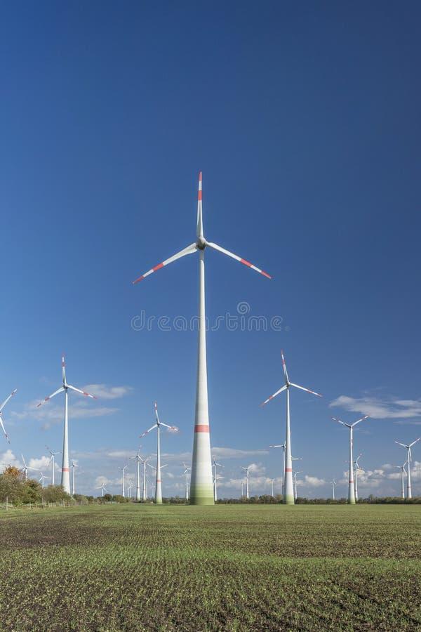 Windturbines op gebied stock foto