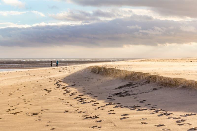 Windy Beach met Blazend Zand stock foto's