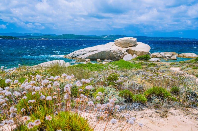 Windy costline with sandstone rocks near Costa Serena, Sardinia, Italy stock photo