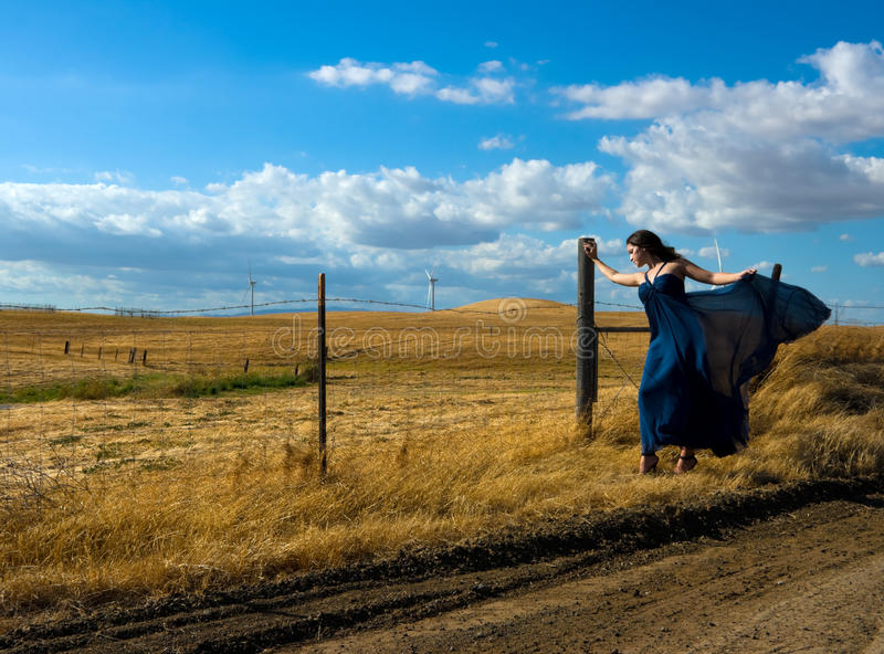 Download Windy Day stock photo. Image of cloud, landscape, fall - 11165042