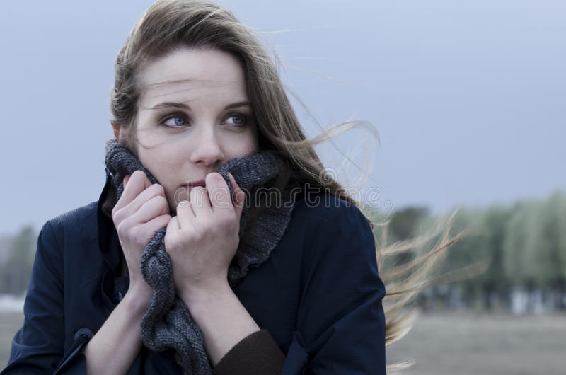 Windy Day On The Beach Royalty Free Stock Image