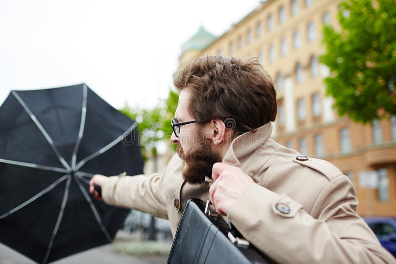 Windy day stock photo