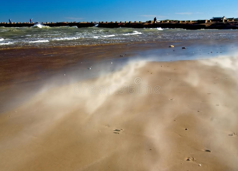Windy day on sandy beach royalty free stock photography